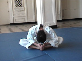 Aikido stretch