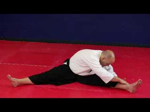 aikido leg stretch